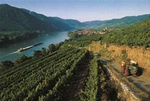 Walking the Blue Danube Valley, Austria