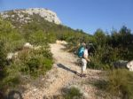 Walking holidays in Croatia  - Dalmatian Islands 