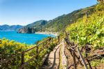 Walking holidays in Italy - Cinque Terre - Click Here For Full Details