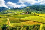 Walking holidays in Italy - Tuscany - Chianti - Click Here For Full Details